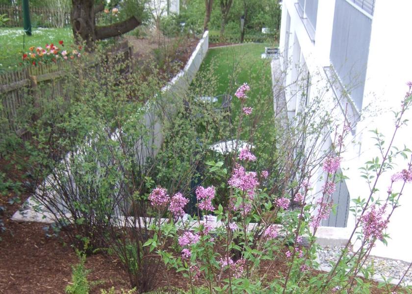 Studentenwohnheim Garten
